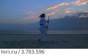 Купить «Женщина занимается карате на пляже на закате», видеоролик № 3783596, снято 24 июня 2012 г. (c) Коваль Василий / Фотобанк Лори