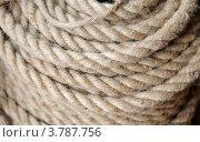 Купить «Веревка пеньковая», эксклюзивное фото № 3787756, снято 26 августа 2012 г. (c) Юрий Морозов / Фотобанк Лори