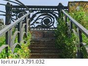 Заросшая лестница и уникальные чугунные перила Крестовского моста (2012 год). Стоковое фото, фотограф Алёшина Оксана / Фотобанк Лори