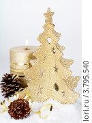 Купить «Рождественская композиция», фото № 3795540, снято 4 декабря 2011 г. (c) Наталия Кленова / Фотобанк Лори