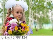 Купить «Нарядная школьница с букетом», фото № 3798124, снято 1 сентября 2012 г. (c) Володина Ольга / Фотобанк Лори