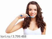 Купить «Привлекательная шатенка с зубной щеткой чистит зубы», фото № 3799488, снято 18 августа 2012 г. (c) Sergey Nivens / Фотобанк Лори