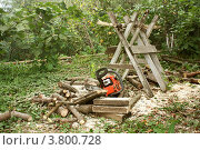 Заготовка дров на зиму (2012 год). Редакционное фото, фотограф Ольга Хлудова / Фотобанк Лори