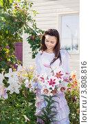 Купить «Улыбающаяся девушка на даче летом ухаживает за лилиями», фото № 3808816, снято 18 сентября 2018 г. (c) Майя Крученкова / Фотобанк Лори