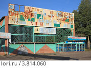 Купить «Спортивно-оздоровительный комплекс в Курлово», эксклюзивное фото № 3814060, снято 2 сентября 2012 г. (c) Игорь Веснинов / Фотобанк Лори