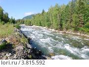 Купить «Река Мульта. Горный Алтай», фото № 3815592, снято 15 июля 2009 г. (c) Анна Омельченко / Фотобанк Лори