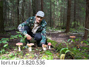 Грибник в лесу на поляне с грибами. Стоковое фото, фотограф Яна Королёва / Фотобанк Лори