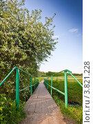 Купить «Яблоня в цвету и мостик через ручей», фото № 3821228, снято 16 мая 2012 г. (c) Ольга Денисова / Фотобанк Лори