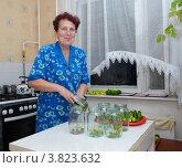 Купить «Женщина консервирует овощи», эксклюзивное фото № 3823632, снято 13 августа 2012 г. (c) Вячеслав Палес / Фотобанк Лори