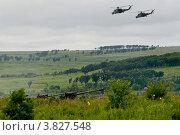 """Боевые вертолеты Ми-24 и 152-мм самоходные артиллерийские пушки 2С5 """"Гиацинт-С"""" Редакционное фото, фотограф Matwey / Фотобанк Лори"""