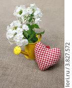 Букет белых флоксов в желтой лейке с красным сердцем на холщовой поверхности. Стоковое фото, фотограф Олеся Сарычева / Фотобанк Лори