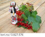 """Традиционная украинская кукла-оберег """"мотанка"""" и ветка калины на деревянном фоне. Стоковое фото, фотограф Олеся Сарычева / Фотобанк Лори"""