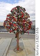 Купить ««Дерево любви» на Лужковом мосту. Москва», фото № 3827616, снято 31 августа 2012 г. (c) Иван Марчук / Фотобанк Лори