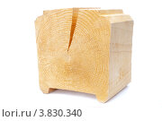 Купить «Расколотая деревянная деталь», фото № 3830340, снято 13 июля 2012 г. (c) Юрий Бизгаймер / Фотобанк Лори