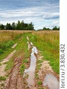 Купить «Лужа на полевой дороге со следами шин», фото № 3830432, снято 25 августа 2012 г. (c) Лисовская Наталья / Фотобанк Лори