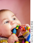 Купить «Портрет маленького ребенка с прорезывателем для зубов», фото № 3832932, снято 27 марта 2012 г. (c) Оксана Ковач / Фотобанк Лори