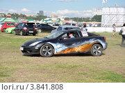 Автоэкзотика 2012 - автомобили и аэрография. Редакционное фото, фотограф Полина Пчелова / Фотобанк Лори
