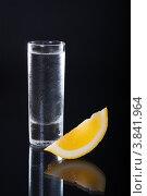 Купить «Стопка холодной водки и долька лимона», фото № 3841964, снято 2 апреля 2020 г. (c) SGr / Фотобанк Лори