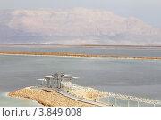 Мертвое море. Стоковое фото, фотограф Felix Bensman / Фотобанк Лори