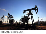 Купить «Силуэты работающих нефтяных насосов на фоне синего неба», фото № 3856964, снято 23 октября 2010 г. (c) Михаил Коханчиков / Фотобанк Лори