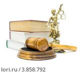 Купить «Молоток судьи и статуя Фемиды», фото № 3858792, снято 22 сентября 2012 г. (c) Ласточкин Евгений / Фотобанк Лори