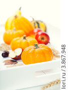 Купить «Натюрморт с тыквами и яблоками», фото № 3867948, снято 20 сентября 2012 г. (c) Наталия Кленова / Фотобанк Лори
