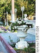 Купить «Декоративный вазон с цветами (клумба), площадь Ленина, Ахтубинск», эксклюзивное фото № 3871024, снято 27 сентября 2012 г. (c) katalinks / Фотобанк Лори