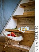 Купить «Корзина с клубникой на деревянной лестнице», фото № 3871180, снято 2 июля 2012 г. (c) Ольга Денисова / Фотобанк Лори