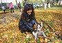 Девушка с щенком собаки породы сибирский хаски (siberian husky) в осеннем парке, фото № 3872256, снято 22 сентября 2012 г. (c) ElenArt / Фотобанк Лори