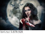 Купить «Ведьма с окровавленным ножом. Хеллоуин», фото № 3878928, снято 17 сентября 2012 г. (c) Константин Юганов / Фотобанк Лори