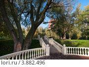 Новая благоустроенная терраса в парке поймы реки Яузы (2012 год). Стоковое фото, фотограф Константин Гуща / Фотобанк Лори