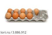 Девять сырых яиц в картонной коробке на белом фоне. Стоковое фото, фотограф Shlomo Polonsky / Фотобанк Лори