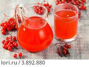 Купить «Морс из калины с сахаром», эксклюзивное фото № 3892880, снято 27 сентября 2012 г. (c) Александр Курлович / Фотобанк Лори