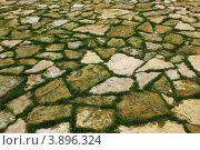 Покрытие из природного камня поросшее зеленой травой. Стоковое фото, фотограф Андрей Новотрясов / Фотобанк Лори