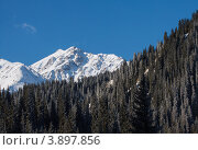 Большой Алматинский пик, Заилийский Алатау, горная система Тянь-Шань, Казахстан (2012 год). Стоковое фото, фотограф Антон Журавков / Фотобанк Лори