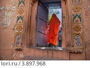 Женщина в оранжевом сари. Индия (2012 год). Стоковое фото, фотограф Svetlana Eremina / Фотобанк Лори