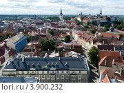 Эстония. Таллин. Панорама старого города (2012 год). Стоковое фото, фотограф Александр Лопарев / Фотобанк Лори