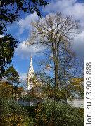 Купить «Никольская церковь в Приволжске, Ивановская область. Осенний пейзаж», фото № 3903888, снято 21 сентября 2012 г. (c) ElenArt / Фотобанк Лори