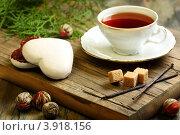 Купить «Пряный чай и имбирное печенье», фото № 3918156, снято 10 октября 2012 г. (c) Марина Сапрунова / Фотобанк Лори