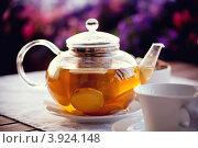 Купить «Чай с имбирем в стеклянном прозрачном чайнике», фото № 3924148, снято 7 июля 2012 г. (c) Евгения Аникиенко / Фотобанк Лори