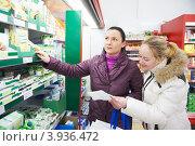 Купить «Две молодые женщины в отделе с молочными продуктами в супермаркете», фото № 3936472, снято 31 декабря 2011 г. (c) Дмитрий Калиновский / Фотобанк Лори