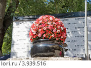 Купить «Вазон с цветами. Таллин», эксклюзивное фото № 3939516, снято 12 августа 2012 г. (c) Александр Щепин / Фотобанк Лори
