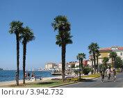 Купить «Адриатическое море, вид на город Пореч, Хорватия, Европа», эксклюзивное фото № 3942732, снято 21 августа 2018 г. (c) lana1501 / Фотобанк Лори