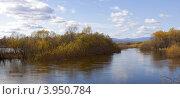 Купить «Пойма реки Биры в осеннее половодье», фото № 3950784, снято 13 октября 2012 г. (c) Дмитрий Фиронов / Фотобанк Лори