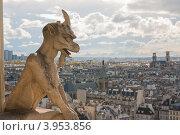 Купить «Франция, Париж, вид с Собора Парижской Богоматери», фото № 3953856, снято 29 апреля 2012 г. (c) Алексей Ширманов / Фотобанк Лори