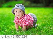 Маленький мальчик в траве. Стоковое фото, фотограф Екатерина Штерн / Фотобанк Лори