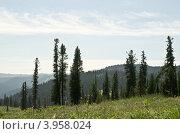 Западные Саяны, Ергаки, Сибирь. Стоковое фото, фотограф Сергей Зоммер / Фотобанк Лори