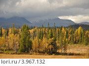Осень. Стоковое фото, фотограф Корзун Юрий / Фотобанк Лори