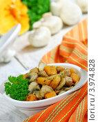 Купить «Мясо, тушенное с грибами и тыквой», фото № 3974828, снято 29 октября 2012 г. (c) Надежда Мишкова / Фотобанк Лори