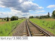 Купить «Железная дорога и параллельная грунтовка», эксклюзивное фото № 3980500, снято 18 июля 2012 г. (c) Юрий Шурчков / Фотобанк Лори